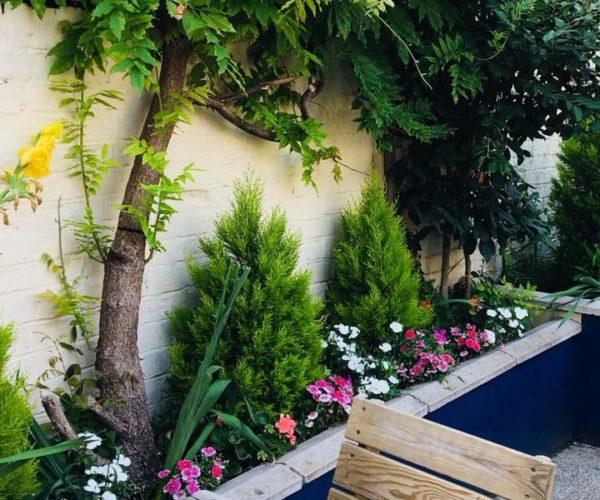 C&A Garden 4